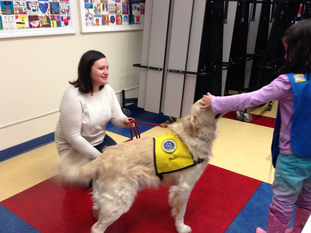 Jamesville Girl Scouts Learn Pet Therapy