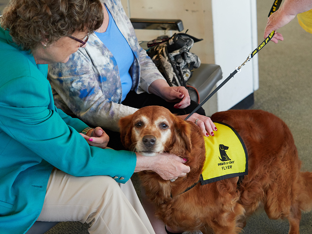 Flyer_Greets_Seated_Passengers_Airport_Pet_Therapy