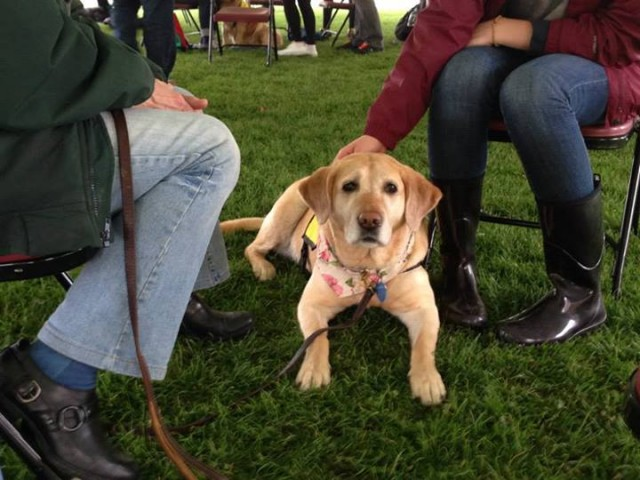 Winter attends the PAWS for Stress event at Syracuse University