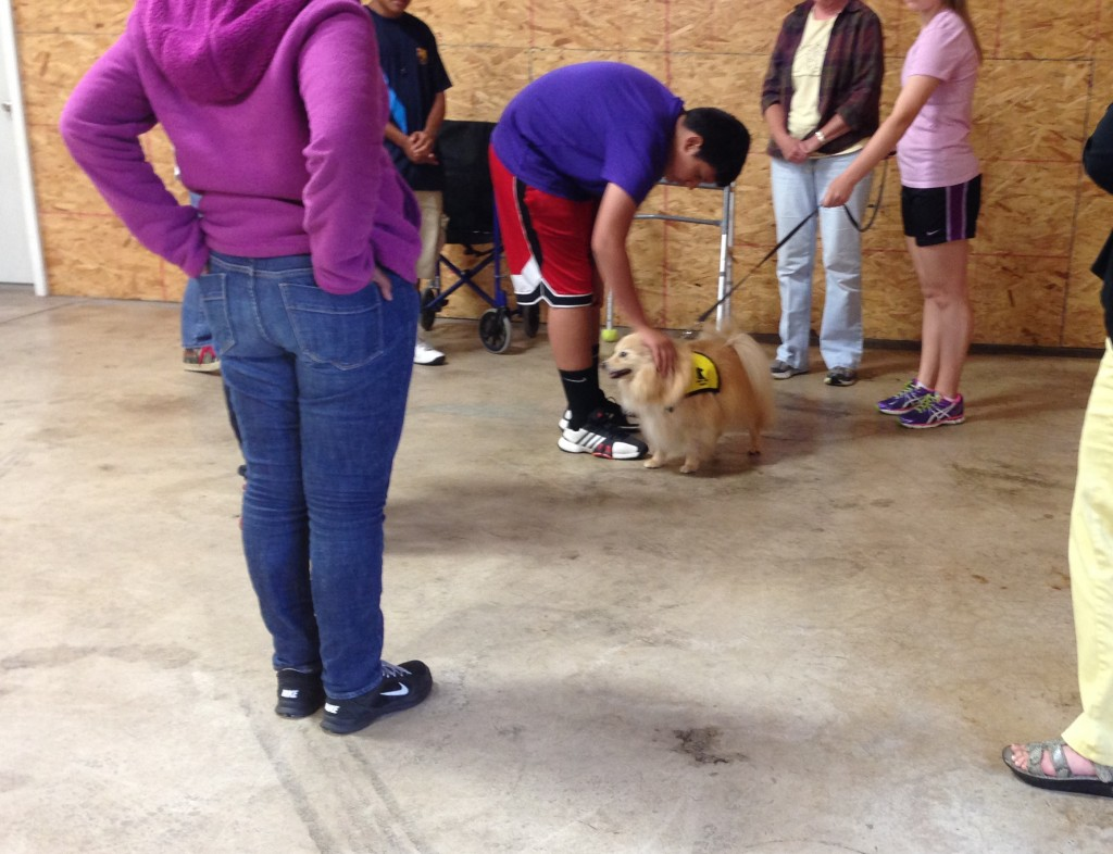 LPP Students in Syracuse Learn About Pet Therapy