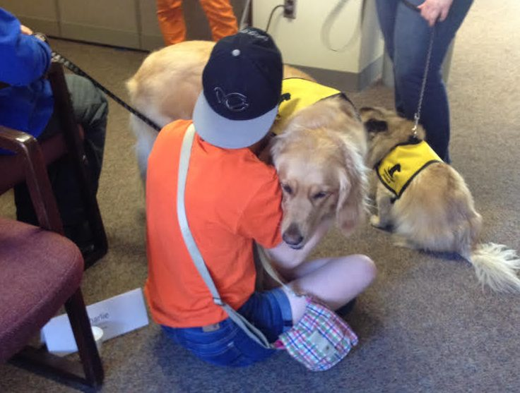 Pet Therapy at Syracuse University