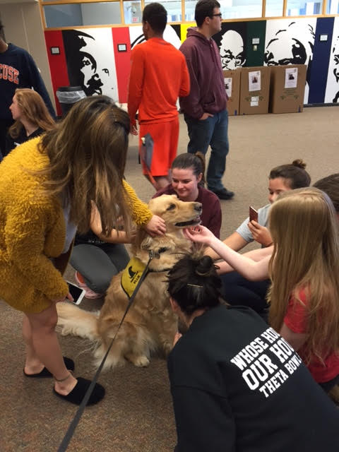 Pet Therapy Syracuse University