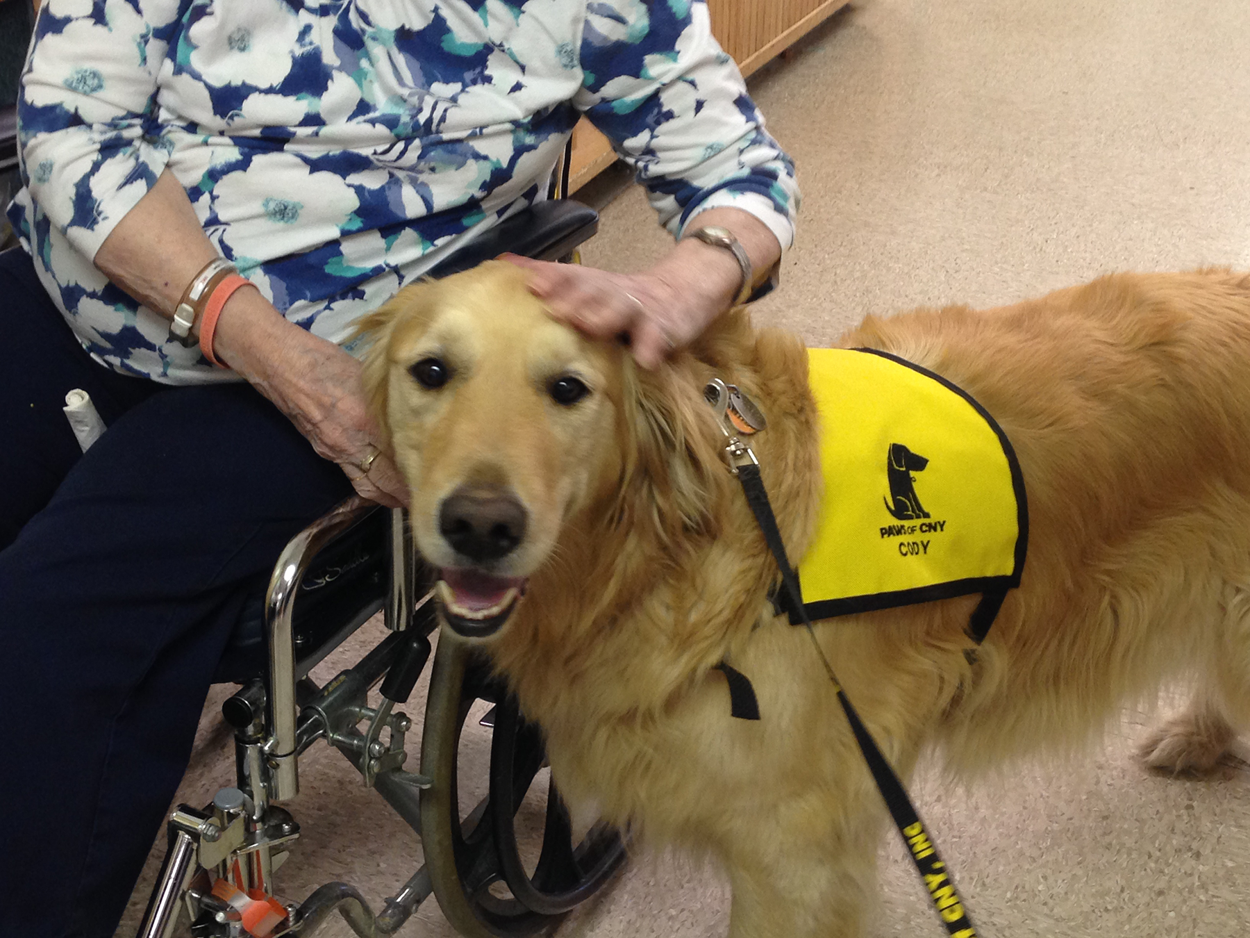 nursing_home_pet_therapy_cody_1800