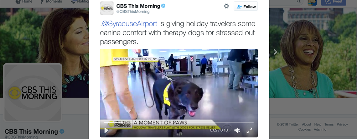 Media Coverage for our Airport Pet Therapy Program