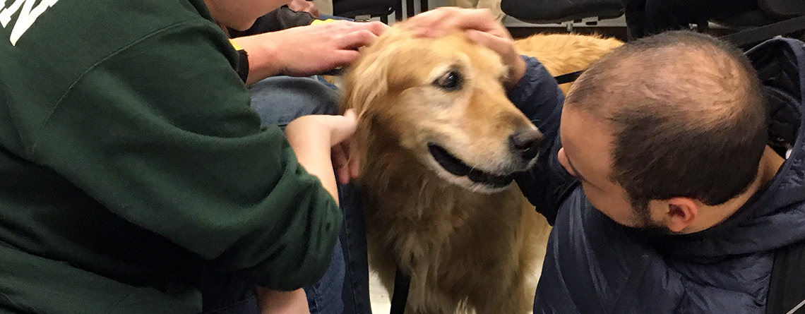 Morrisville Students De-Stress with Therapy Dogs