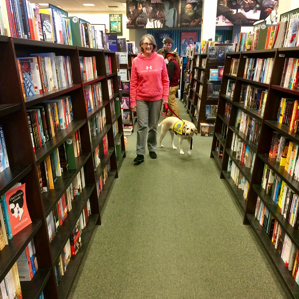 Pet_Therapy_Bookfair_Barnes_and_Noble_Yellow_Lab
