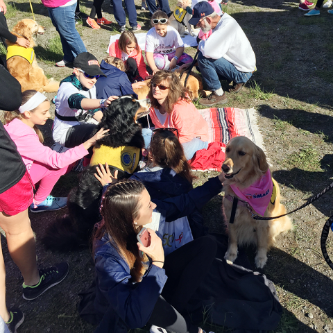 PAWS of CNY Therapy Dogs attend Race for the Cure