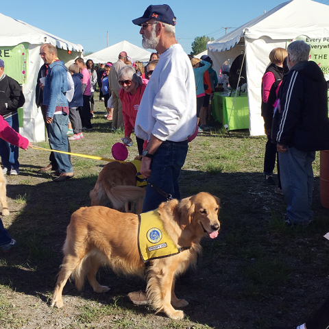 Therapy Dog Cody and owner Eric meet with participants at the Race for the Cure