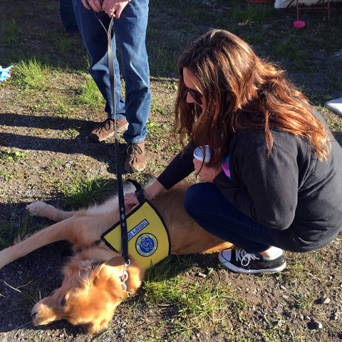 Therapy Dog Cody meets with participants at the Race for the Cure