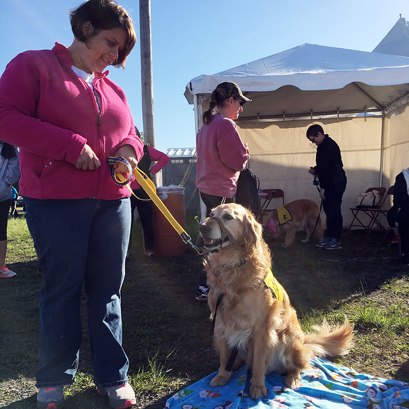 Therapy Dog Piper meets with participants at the Race for the Cure
