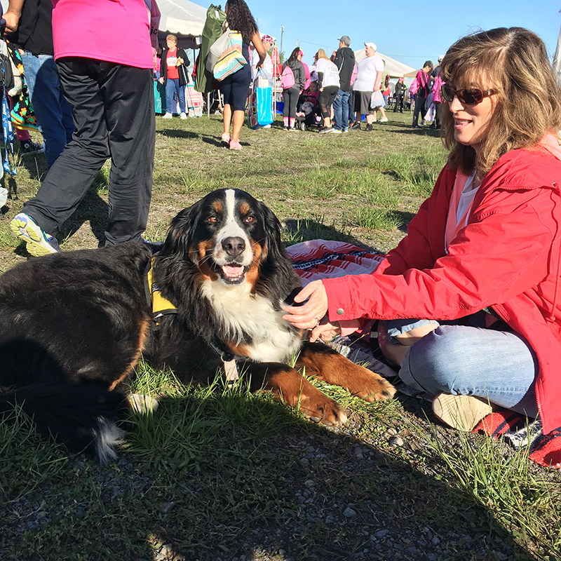Therapy Dog Stella and owner Sue meet with participants at the Race for the Cure