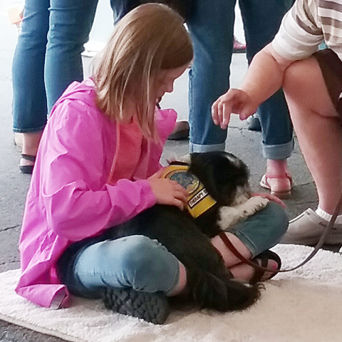 Therapy Dog Sammy Attends Employee Wellness Event in Oswego