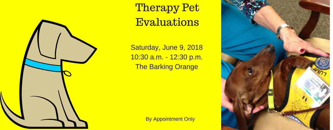 Therapy Pet Evaluations By Appointment, June 9 at Barking Orange