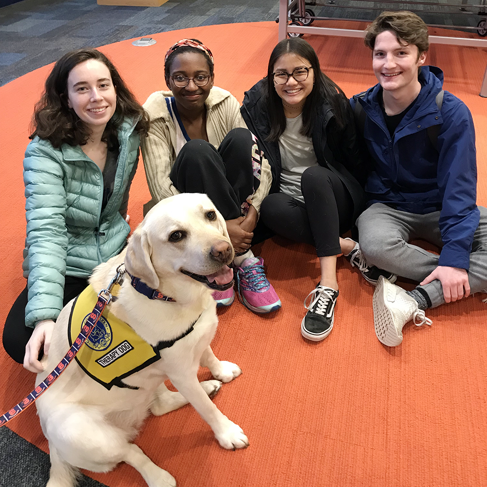 Syracuse College Pet Therapy Partners