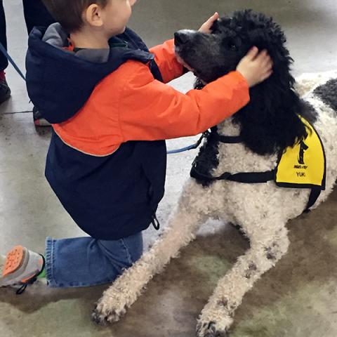 Pet-Therapy Teams at Syracuse Kids Expo - Yuki